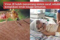 Penyakit JE